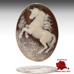 Pegasus Horse Shell Engraved Cameo Gold