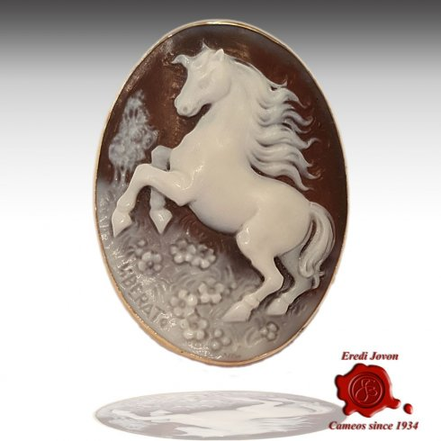 Shell Horse Pegasus Cameo Gold