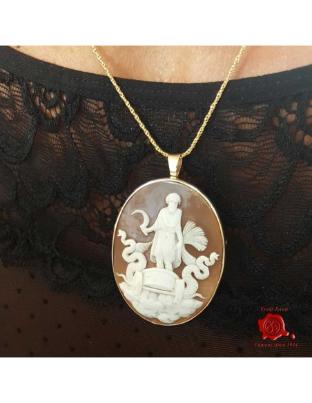 Triptolemus Sardonic Shell Hand Carved Cameo Gold Set