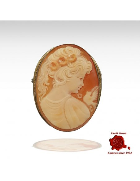 Edwardian Shell Cameo Brooch and Pendant