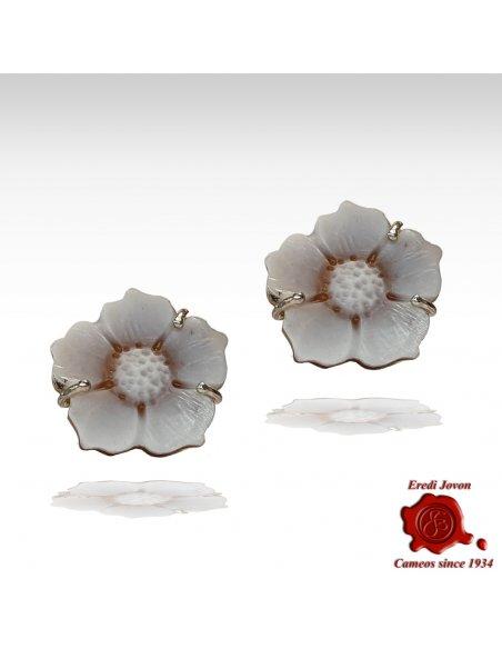 Shell Sardonica cameo flower earrings Studs